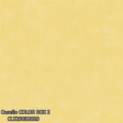 Caselio_COLOR_BOX_2_CLX25032020_k.jpg